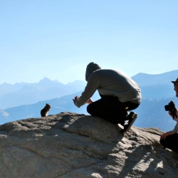 Two men photographing a squirrel at Yosemite