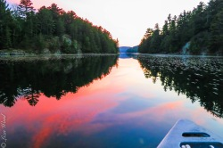 Sunset forest reflections from a small boat