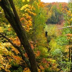 Man ziplining through Autumn trees