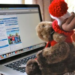 Toy moose working on a laptop computer